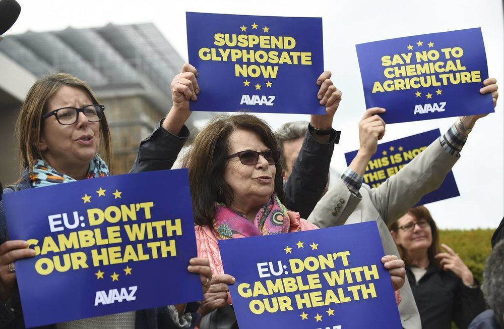 Europeans Protested EU's Decision to Renew Glyphosate for Another 5 Years