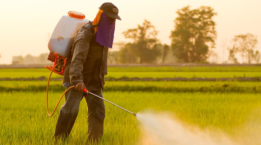 Glyphosate Claims to Produce Carcinogenic Substances