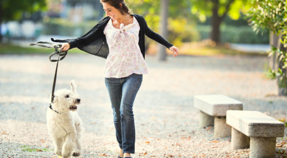 Walking With Your Dog Is a Good Chance to Exercise and Bond With Your Pet