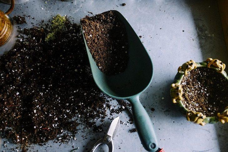 gardening-career-3